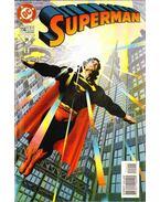 Superman 114. - Waid, Mark, Butler, Steven, Swan, Curt, Marrinan, Chris, Renaud, Chris, Tom Peyer