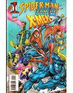 Spider-Man Team-Up Vol. 1. No. 1 - Waid, Mark, Peyer, Tom, Lashley, Ken
