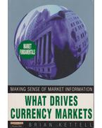 What Drives Currency Markets: After the euro