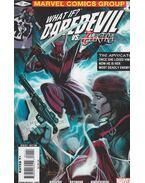 What if? Daredevil VS. Elektra No. 1.