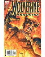 Wolverine Special: Firebreak One-Shot No. 1