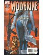 Wolverine No. 64.