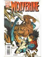 Wolverine No. 65.