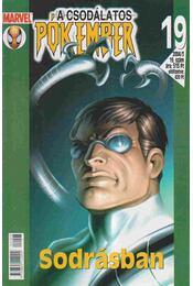 A Csodálatos Pókember 2004/3. 19. szám - Régikönyvek