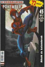 A Csodálatos Pókember 2007/3. 45. szám - Régikönyvek