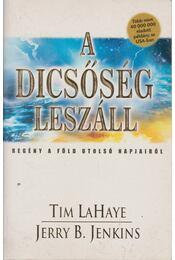 A dicsőség leszáll - LaHaye, Tim, Jenkins, Jerry B. - Régikönyvek