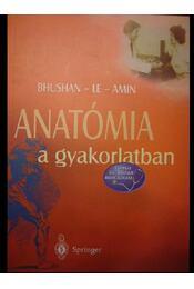 Anatómia a gyakorlatban - Régikönyvek