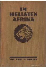 Im hellsten Afrika - Atelen, Carl C. - Régikönyvek