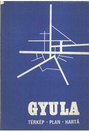 Gyula (térkép) - Régikönyvek