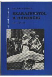 Szarajevótól a háborúig - Régikönyvek
