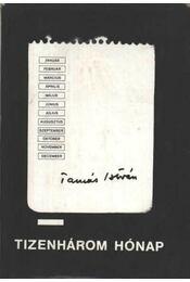 Tizenhárom hónap - Régikönyvek