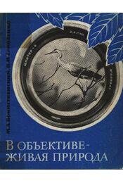 Objektívben az élő természet (В объективе - живая природа)) - Régikönyvek