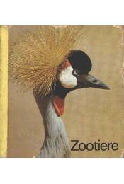 Zootiere - Régikönyvek