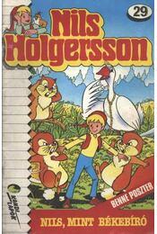 Nils Holgersson 29. - Régikönyvek