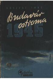 Budavár ostroma 1945 - Régikönyvek