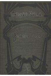 Beszterce ostroma - Régikönyvek