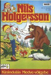 Nils Holgersson 43. szám 1991/12. december - Régikönyvek