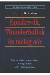 Spitfire-ök, Thunderboltok és meleg sör - Régikönyvek