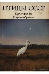A Szovjetúnió madarai (Птицы СССР) - Régikönyvek