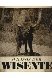 Wildnis der Wisente - Régikönyvek