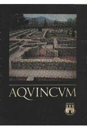 Aquincum - Régikönyvek