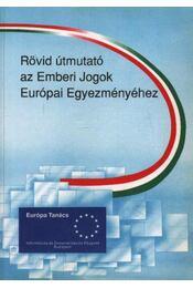 Rövid útmutató az Emberi Jogok Európai Egyezményéhez - Régikönyvek