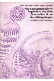 Neue paläontologische ergebnisse aus dem oberpaläozoikum des bükkgebirges - Régikönyvek