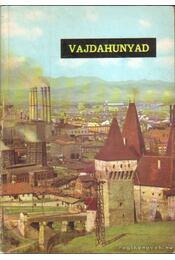 Vajdahunyad - Régikönyvek