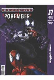 A Csodálatos Pókember 2006/7. 37. szám - Régikönyvek