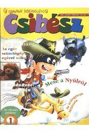 Csibész 2003. január-február - Régikönyvek