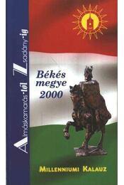 Békés megye 2000 - Régikönyvek