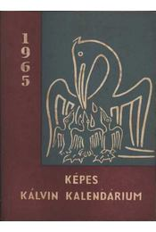 Képes Kálvin Kalendárium 1965 - Régikönyvek