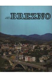 Brezno - Régikönyvek