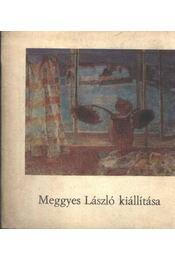 Meggyes László kiállítása - Régikönyvek
