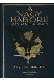 A nagy hábrú irásban és képekben I. kötet - Régikönyvek