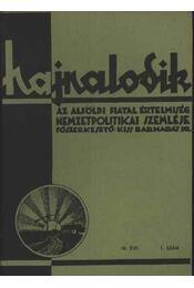 Hajnalodik - IV. évf. 1. - Régikönyvek