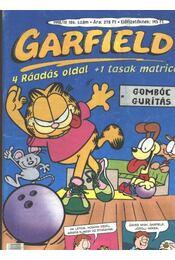 Garfield 1998/10. 106. szám - Régikönyvek
