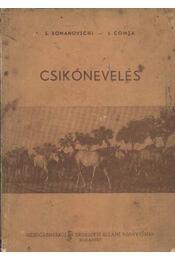 Csikónevelés - Régikönyvek