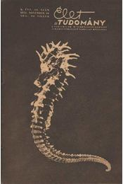 Élet és Tudomány 1955. november X. évfolyam 48. szám - Régikönyvek