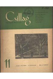 Csillag 11. 1948. október II. évfolyam - Régikönyvek