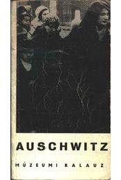Auschwitz múzeumi kalauz - Régikönyvek