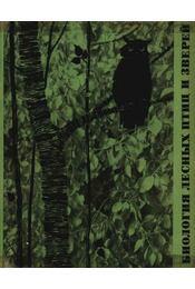 Az erdő állatainak és madarainak biológiája (Биология лесных птиц и зверей) - Régikönyvek