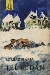 Tél Budán - Régikönyvek