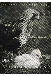 A madár és kicsinye (Der Vogel und seine Jungen) - Régikönyvek
