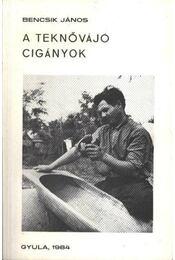 A teknővájó cigányok - Régikönyvek