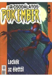 A Csodálatos Pókember 2002/2. 6. szám - Régikönyvek