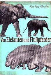 Von Elefanten und Flußpferden - Régikönyvek