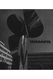 Tatabánya - Régikönyvek