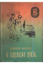 A szebeni fiúk - Régikönyvek