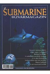 Submarine 2000. június-július - Régikönyvek